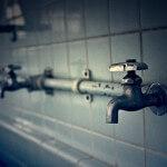 mikan-water02