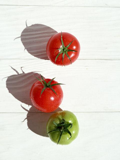 tomatosan_06