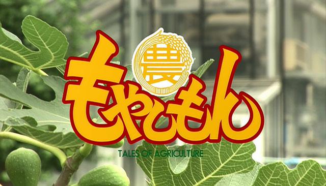 臭いけど美味しい!?『もやしもん』から垣間見る発酵食品の世界!